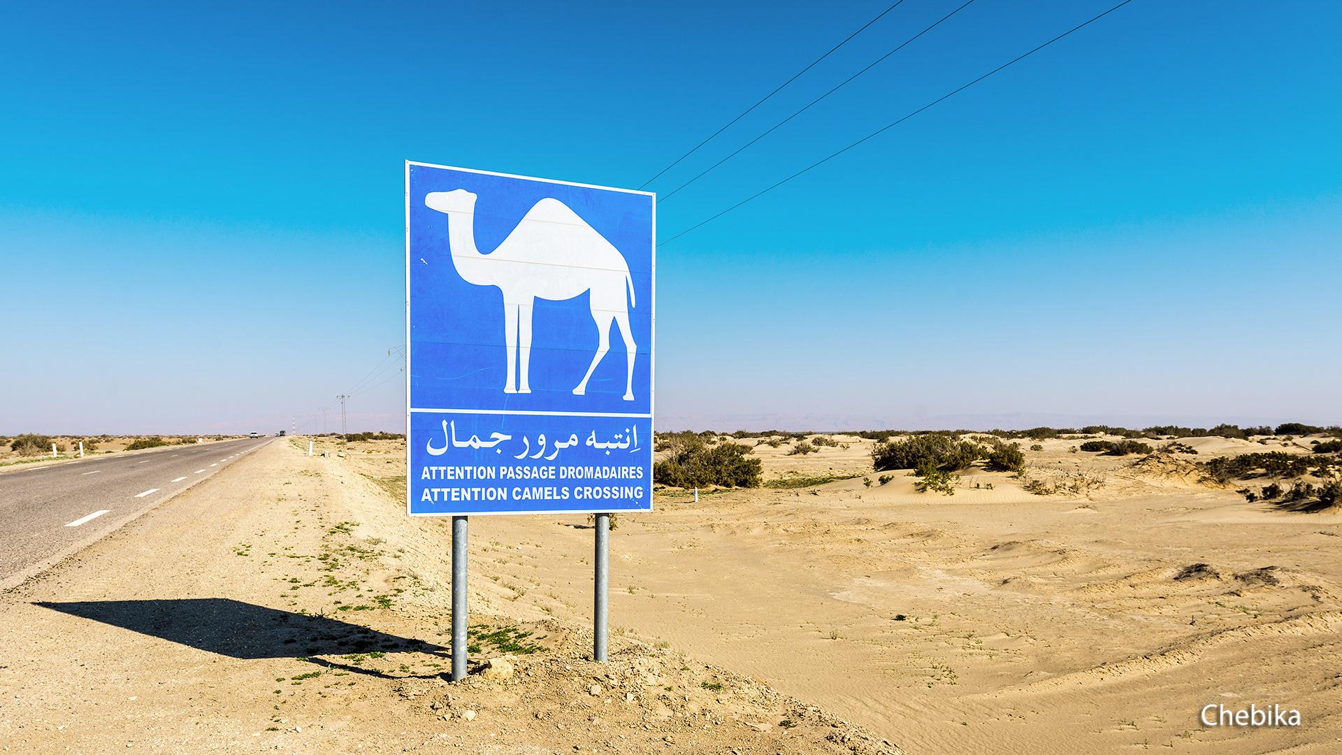 Saharyjski Off-Road Tunezja, Wyc. Objazdowe, Wyc. objazdowe