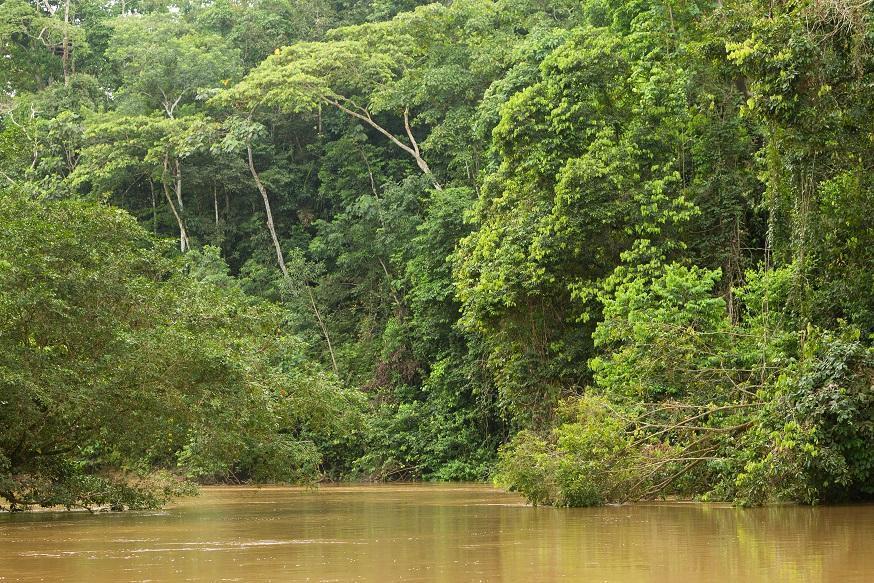 Peru - Boliwia - Amazonia