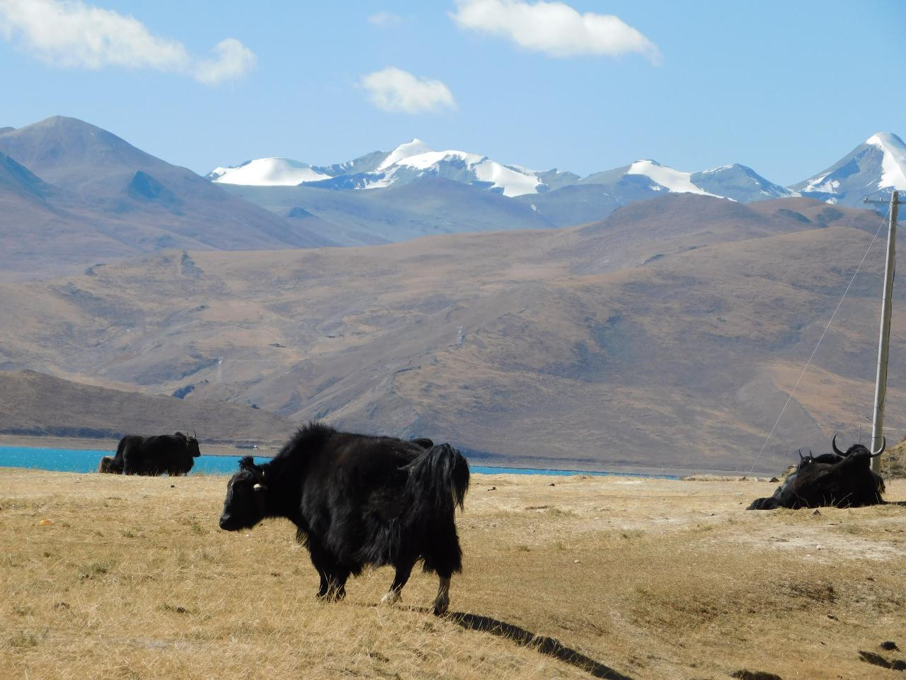 Tybet - Nepal
